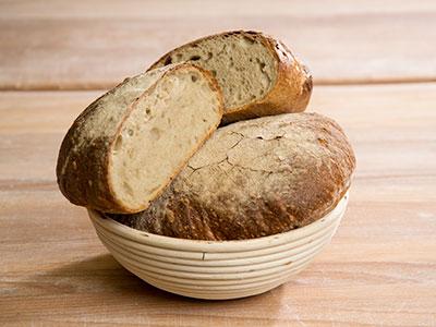 urbaecher-leib